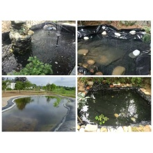Hdpe fish pond liner geomembrane for agriculture