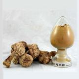 Agaricus Blazei Mushroom Extract, Plant Extract