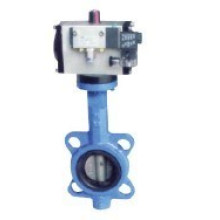 Wafer Type Butterfly Valve (D671X)