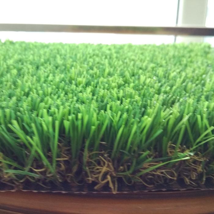 Mid-grade Landscaping Grass