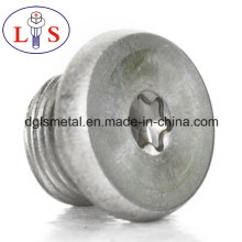 Ss 304 Torx Recess Bolt with Washers