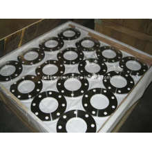 DIN2576 Pn10 Forged Stainless Steel Flanges