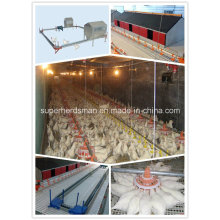Chicken Breeder Poultry Farm Equipment