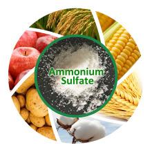 Sulfate d'ammonium Granulat blanc pour l'engrais agricole