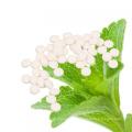 Food Additive Stevia Tablets Bottle Manufacturer