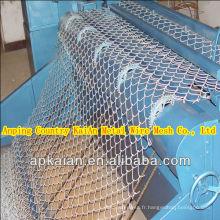 Anping clôture en maille en PVC revêtue de divers fils de clôture électronique pour ferme / famille / usine / aire de jeux ---- usine de 30 ans