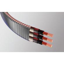 Câble d'alimentation cryogénique à bouche plate