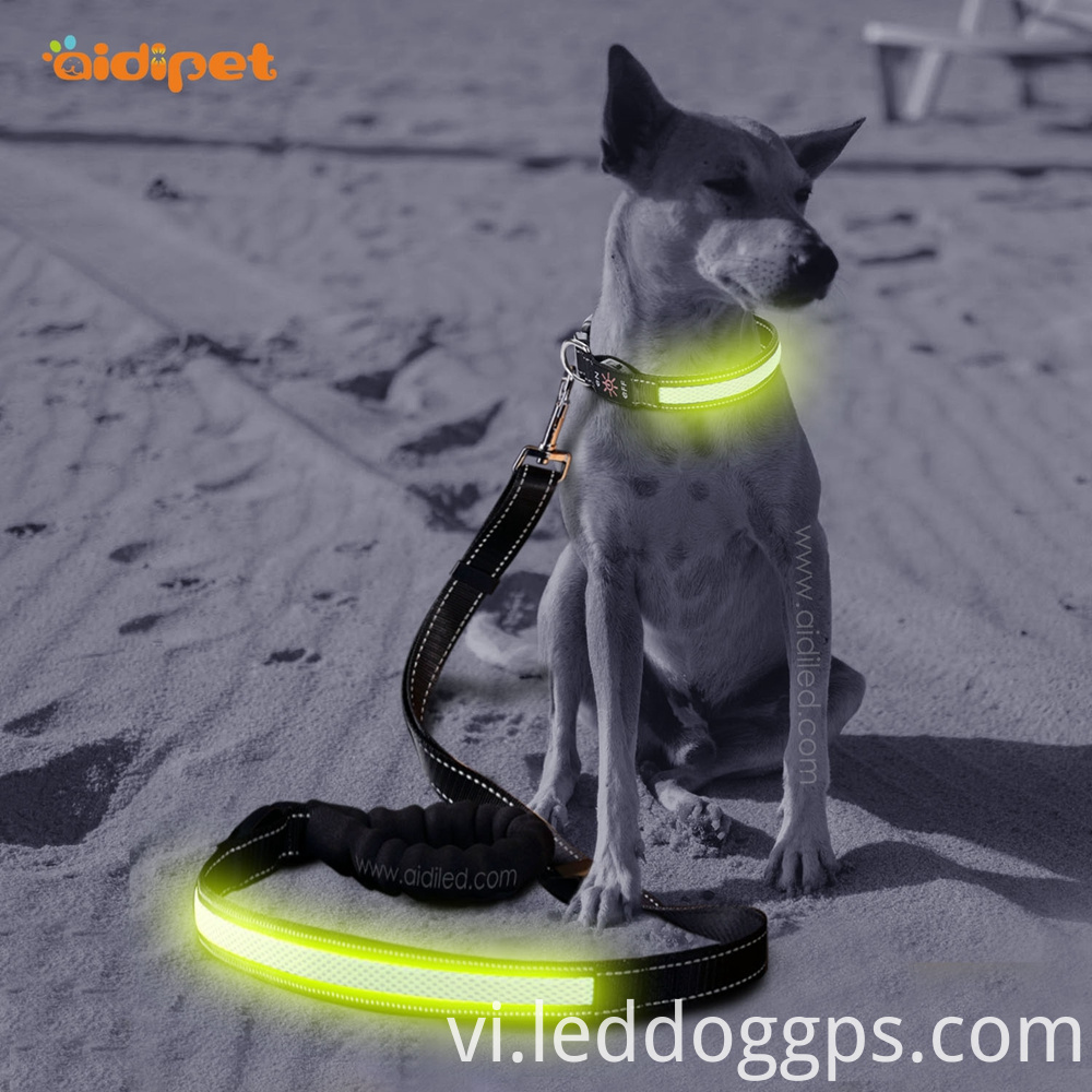 Led Illuminated Dog Leash