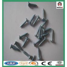 Schrauben- / zusammengesetzte Trockenbau-Schrauben / verzinkte Trockenbau-Schraube