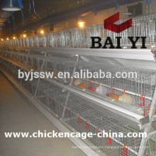 Install Video For Construction of Poultry Cages For Poultry Farms For Sale
