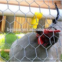 Fabrication hexagonale de fil de volaille pour le poulet et les lapins