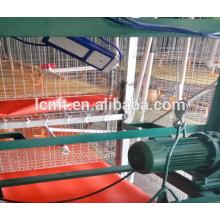 equipo automático para granja de pollos