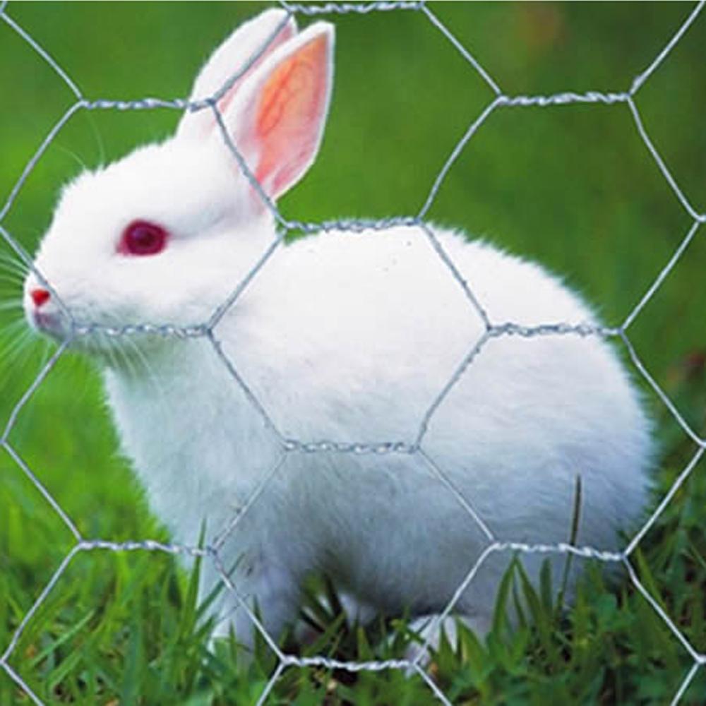 PVC-beschichtetes Anti-Oxidations-Kaninchen-Sechskant-Draht-Netting ...