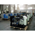 Dieselgenerator 10kVA-30kVA angetrieben durch chinesischen Yangdong Motor