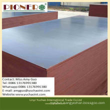 1220*2440mm High Grade Building Template with Low Price