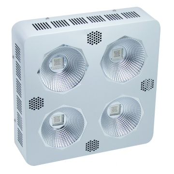 Promoción Greenhouse Hydroponics 768W LED Grow Light