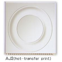 PVC Hot Transfer Printed Panel (AJ2)