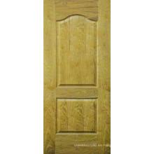 Piel de la puerta de chapa (HDV-B024)