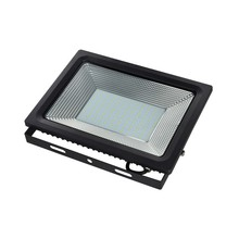 100W IP65 Driverless LED Flood Light