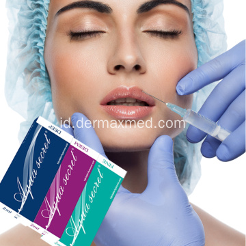 Hyaluronic Acid Dermal Filler dengan CE Certificates