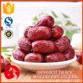 Jujube fruit,red jujube fruit,organic red dried jujube
