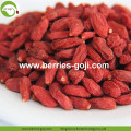 Buy Wholesale Bulk Price Low Pesticide Goji Berry