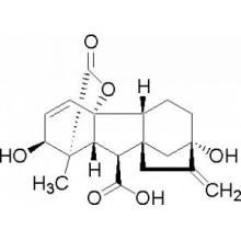Гибберелловая кислота (GA3) 90% Tc 10% Tablet
