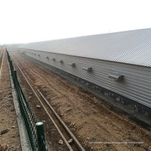 Construction de frites de volaille de Qingdao Chine pour un service unique