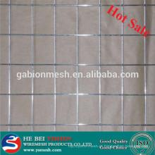 Hot sale 2x2 malha de arame soldada galvanizada para painel de vedação