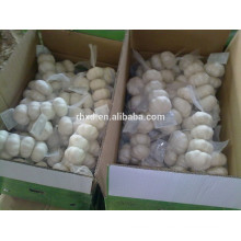 China garlic/China new fresh garlic/2014 Chinese Gralic