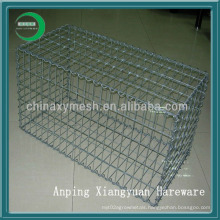 Supply Anping Gabion Box (XY-12U)