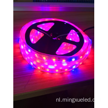 LED Grow Strip