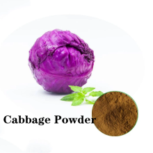 Buy online active ingredients price Cabbage Powder
