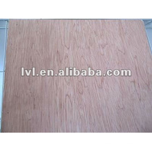 1220*2440mm bintangor plywood for furniture