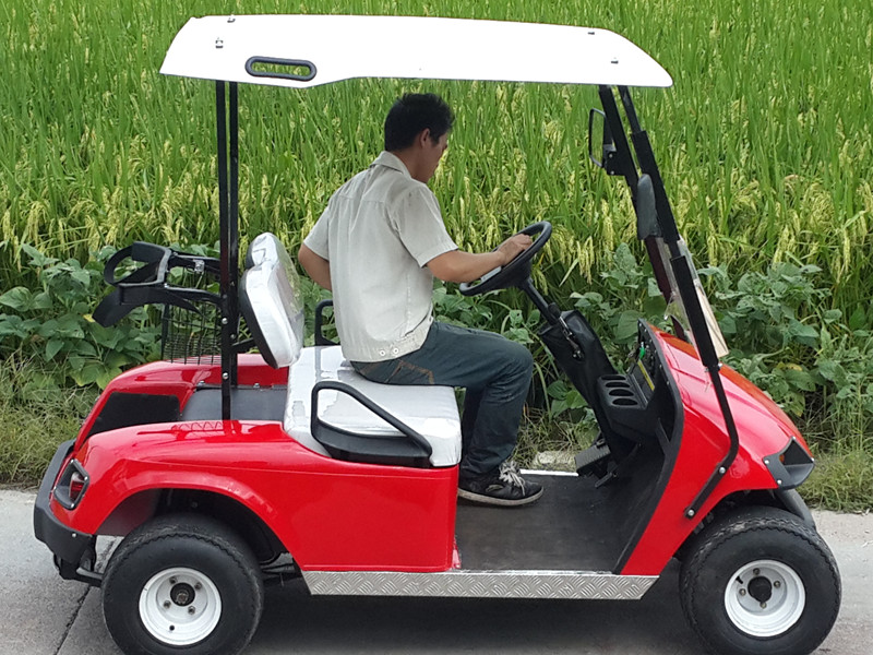 Two Seat Golf Cart