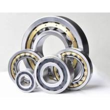 Fornecer rolo cruzado e rolamentos de esferas para o Reino Unido com bom serviço pós-venda