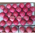 China Yantai Fresh Red Fuji Apple