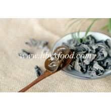 Champignon comestible séché d'oreille d'arbre noir en paquet de 1kgs