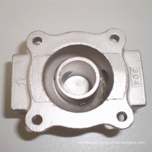 Stainless Steel Investment Casting (304, 304L)