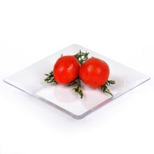Plato desechable PS / PP Bandeja de plástico Dinner Ware