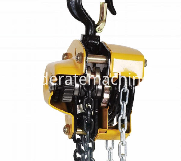 CHAIN BLOCK HOIST (6)