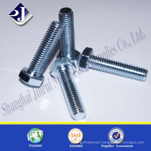 Hot Dip Galvanized Grade 4.8 To 8.8 Carbon Steel Hex Bolt                                                                         Quality Choice