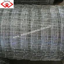 Clôture de terrain fournisseur de porcelaine avec certificats ISO9001 et SGS