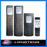 Galvanized / PVC Coated All Kinds of Welded Wire Mesh