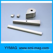 Irregular shape neodymium/NdFeB permanent Magnet