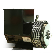 Best Price Pure Copper 40kw/50kVA Alternator Manufacturer (JDG224D)