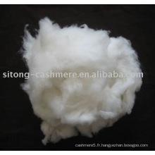 fibre de cachemire épilée