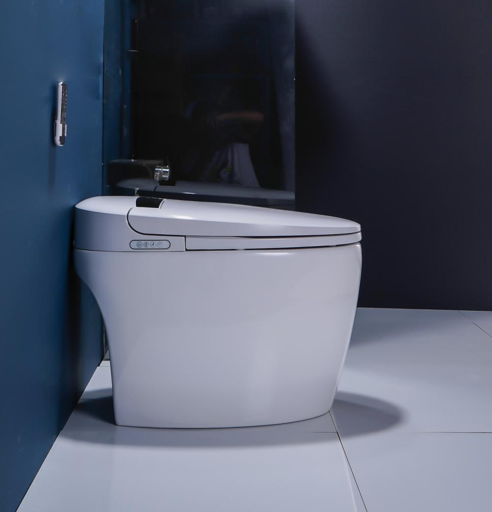 8102 4 Smart Toilet