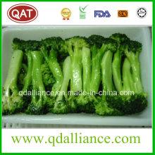 Brócoli con corte congelado IQF
