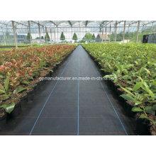 Tela do controle das ervas daninhas dos PP do geotêxtil tecido usado obstruindo a erva daninha
